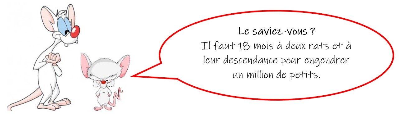 deratisation-fermeture-etablissement-exter-protek-mulhouse-2
